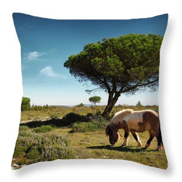 Pony Pasturing Throw Pillow by Carlos Caetano