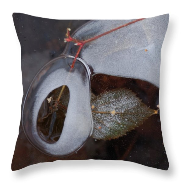 Portal Throw Pillow by Susan Capuano