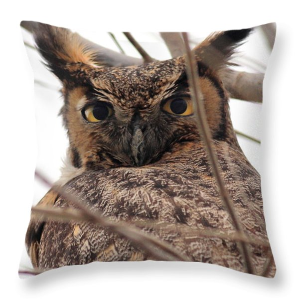 Portrait of a Great Horned Owl Throw Pillow by Wingsdomain Art and Photography