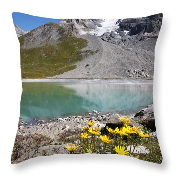 Postcard From Alpes Throw Pillow by Mircea Costina Photography