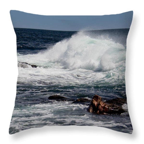 Pounding Throw Pillow by Michel Soucy