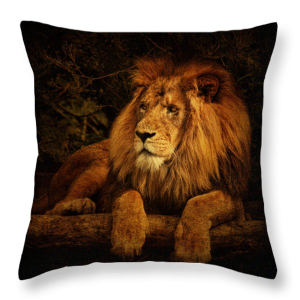 Pragmatism Throw Pillow by Andrew Paranavitana