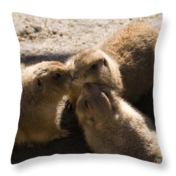 Prairie Dog Gossip Session Throw Pillow by Trish Tritz