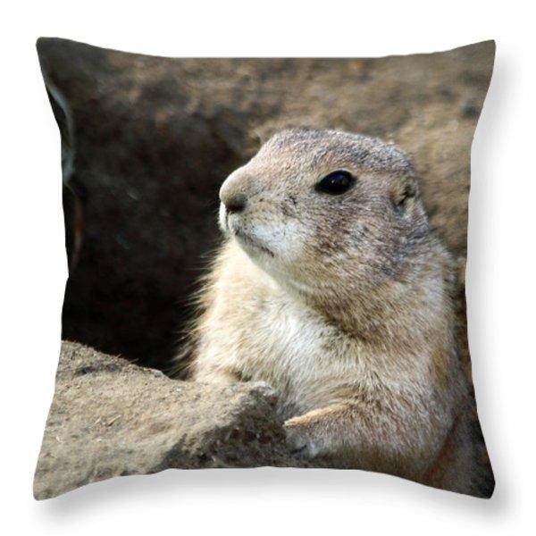 Prairie Dog Lookout Throw Pillow by Karol  Livote
