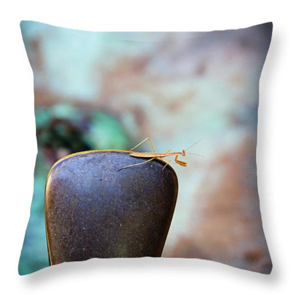 Praying For Water 1 Throw Pillow by Andee Design