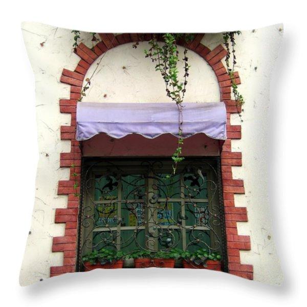 Pretty Decorated Window Throw Pillow by Yali Shi