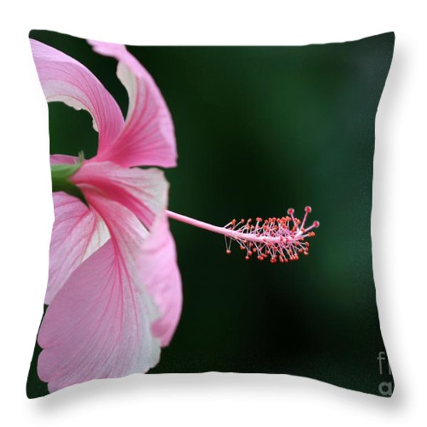 Pretty Pink Hibiscus Throw Pillow by Sabrina L Ryan