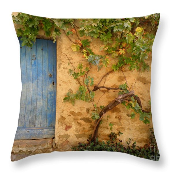 Provence Door 5 Throw Pillow by Lainie Wrightson
