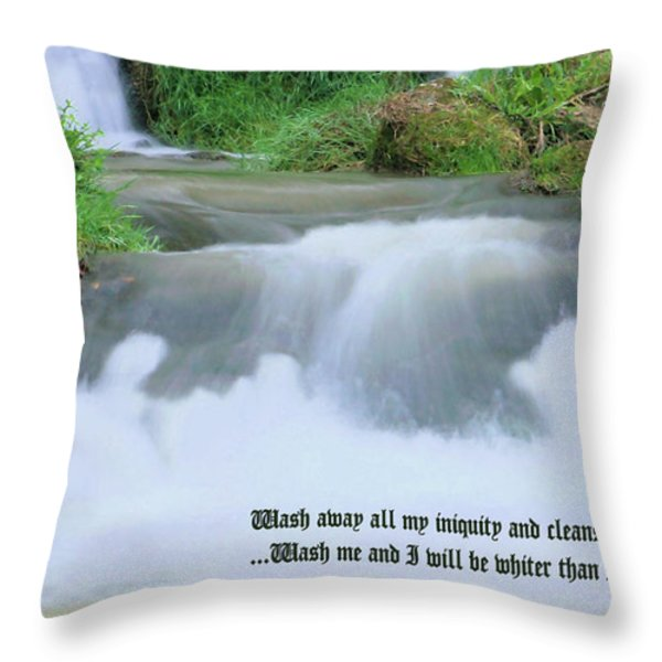 Psalm 51 2 Throw Pillow by Kristin Elmquist