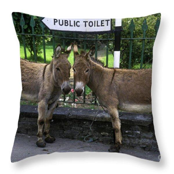Public Toilet Throw Pillow by John Greim
