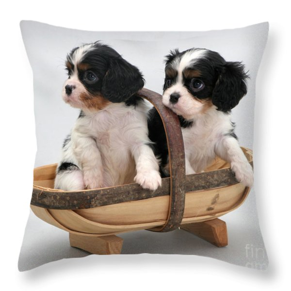 Puppies In A Trug Throw Pillow by Jane Burton