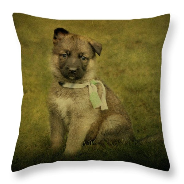 Puppy Sitting Throw Pillow by Sandy Keeton