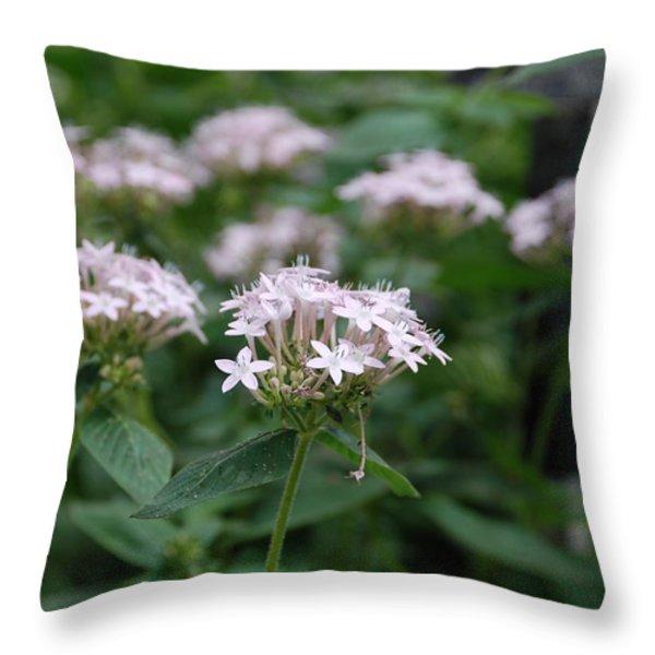 Purple Flower Throw Pillow by Jennifer Lyon