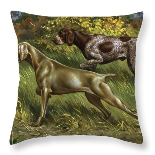 QC by CWL Throw Pillow by National Geographic