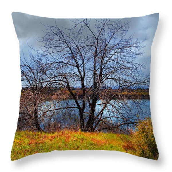 Quarry Lakes in Fremont California . 7D12636 Throw Pillow by Wingsdomain Art and Photography