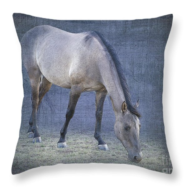 Quarter Horse In Blue Throw Pillow by Betty LaRue