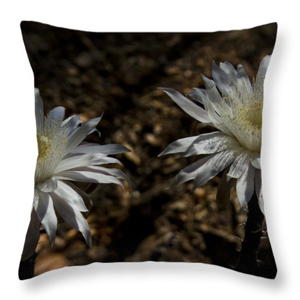 Queen Of The Night Blooms Throw Pillow by Saija  Lehtonen