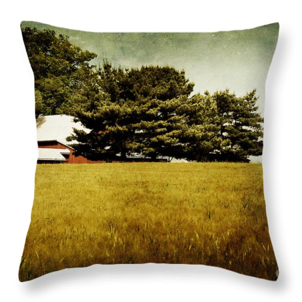 Quiet Throw Pillow by Lois Bryan