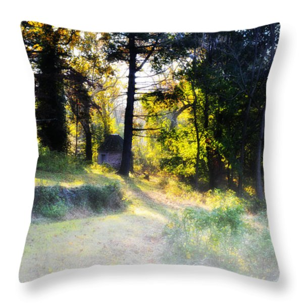 Quiet Morning In The Woods Throw Pillow by Bill Cannon