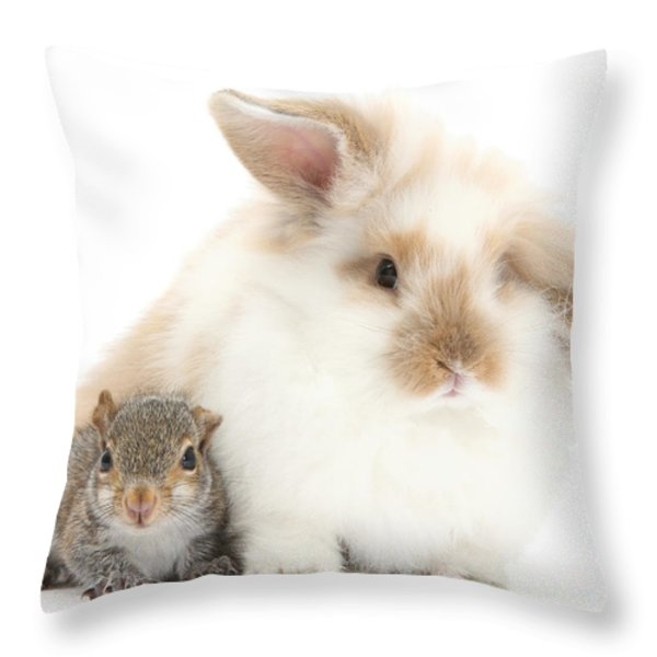 Rabbit And Squirrel Throw Pillow by Mark Taylor