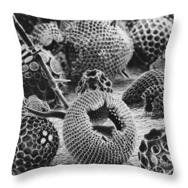 Radiolarians Sem Throw Pillow by Omikron