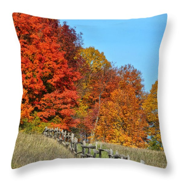 Rail Fence in Fall Throw Pillow by Peg Runyan