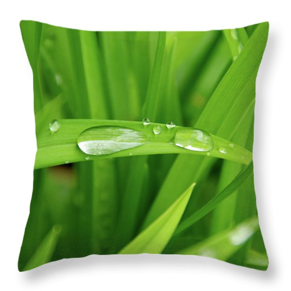 Rain Drops On Grass Throw Pillow by Trever Miller