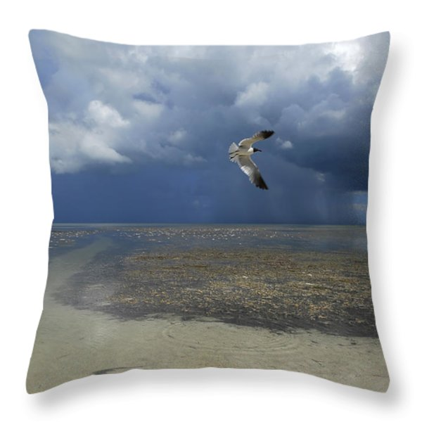 Rain Falls From A Huge Cloud Throw Pillow by Raul Touzon