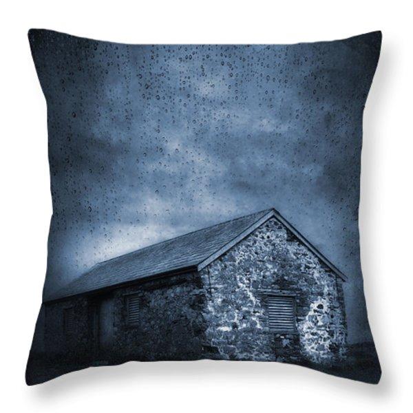 Rain Throw Pillow by Svetlana Sewell