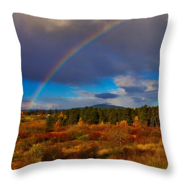 Rainbow over Rithets Bog Throw Pillow by Louise Heusinkveld