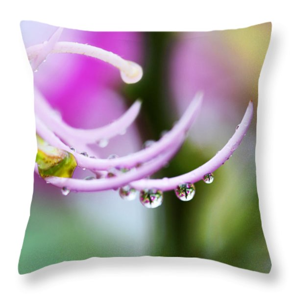 Raindrops On Amherstia Nobilis Throw Pillow by Marilyn Hunt