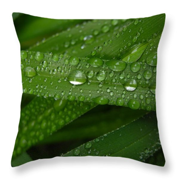 Raindrops on Green Leaves Throw Pillow by Carol Groenen