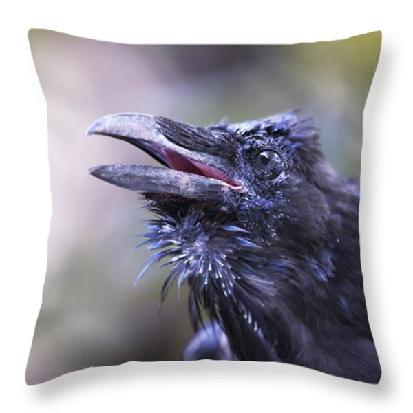 Raven Hyder, Alaska, Usa Throw Pillow by Richard Wear