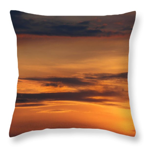 Reach for the Sky 10 Throw Pillow by Mike McGlothlen