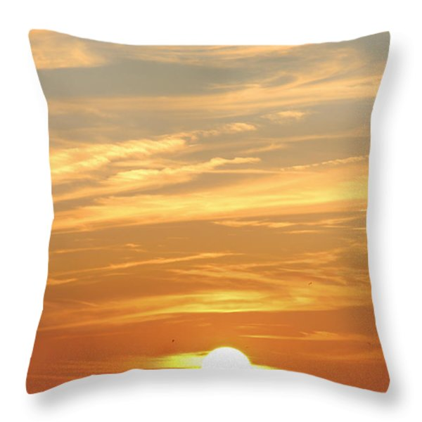 Reach for the Sky 6 Throw Pillow by Mike McGlothlen