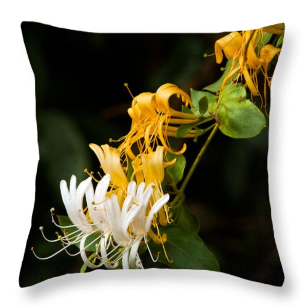 Reaching Throw Pillow by Christopher Holmes
