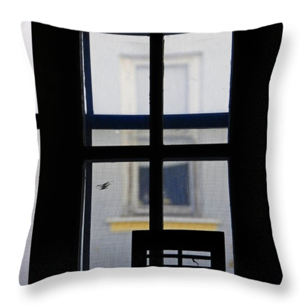 Rear Window 2 Throw Pillow by Skip Hunt