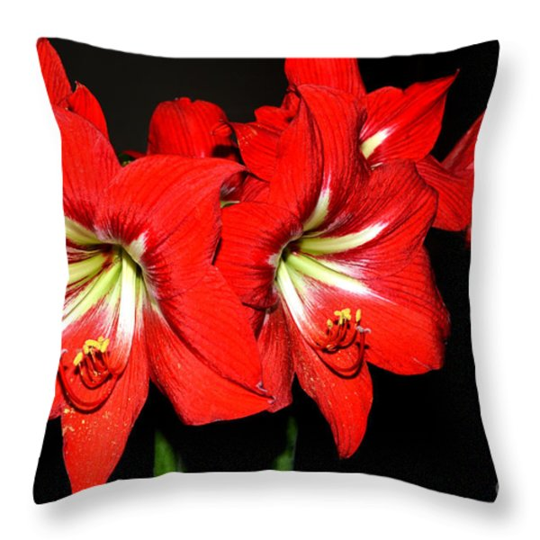 Red Amaryllis Twins Throw Pillow by Pravine Chester