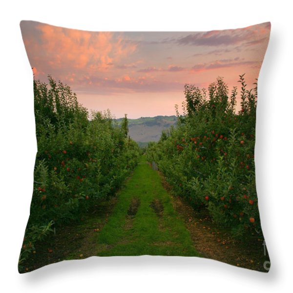 Red Apple Sunset Throw Pillow by Mike  Dawson