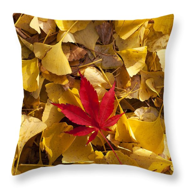 Red Autumn Leaf Throw Pillow by Garry Gay