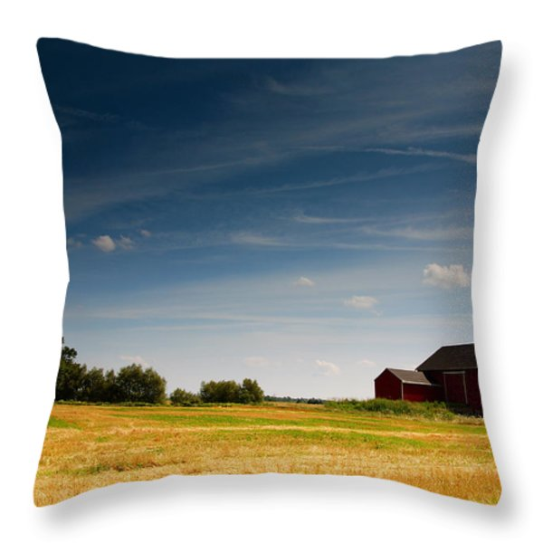 Red Barn Throw Pillow by Cale Best