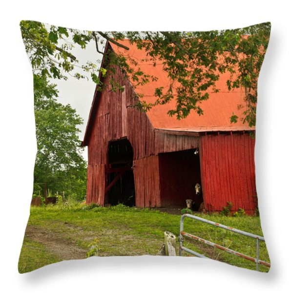 Red Barn with Orange Roof 1 Throw Pillow by Douglas Barnett