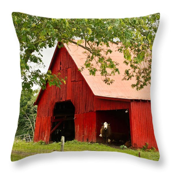 Red Barn with Pink Roof Throw Pillow by Douglas Barnett