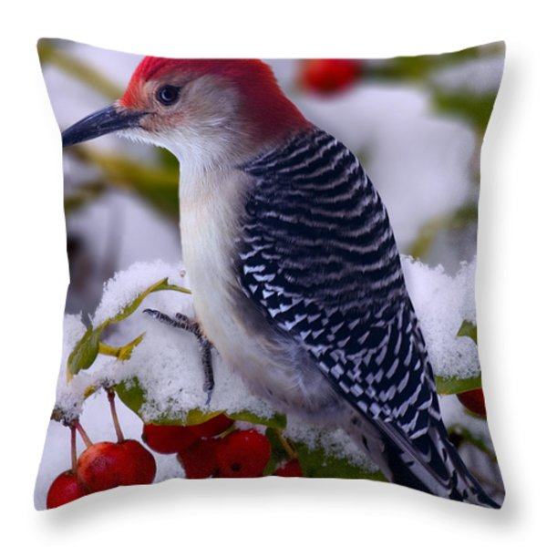 Red Bellied Woodpecker Throw Pillow by Ron Jones