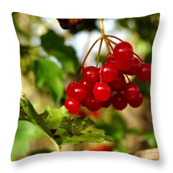 Red Bunch Throw Pillow by LeeAnn McLaneGoetz McLaneGoetzStudioLLCcom