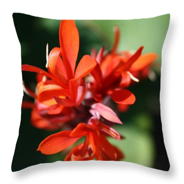 Red Canna Flower Throw Pillow by John W Smith III