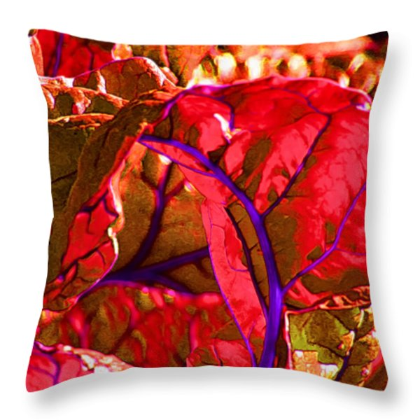 Red Chard Throw Pillow by Rory Sagner