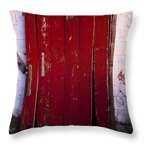 Red Door Throw Pillow by Cale Best