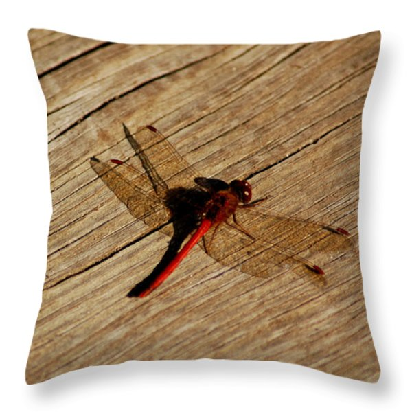 Red Dragon Fly Throw Pillow by LeeAnn McLaneGoetz McLaneGoetzStudioLLCcom