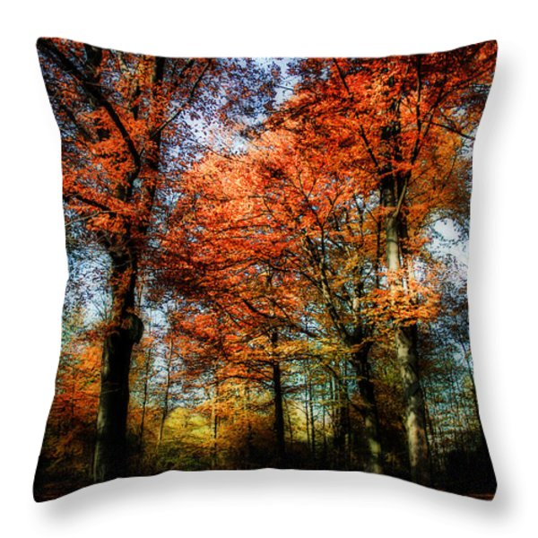 Red Fall Throw Pillow by Hannes Cmarits